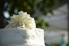 Wedding Cake Luv